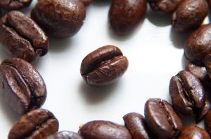 1280px-Coffee_Beans_Photographed_in_Macro